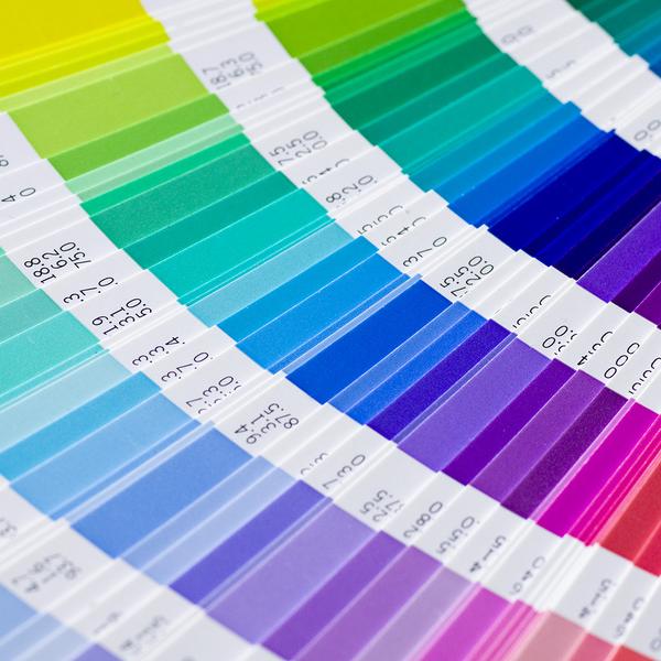 paletas de colores vivos